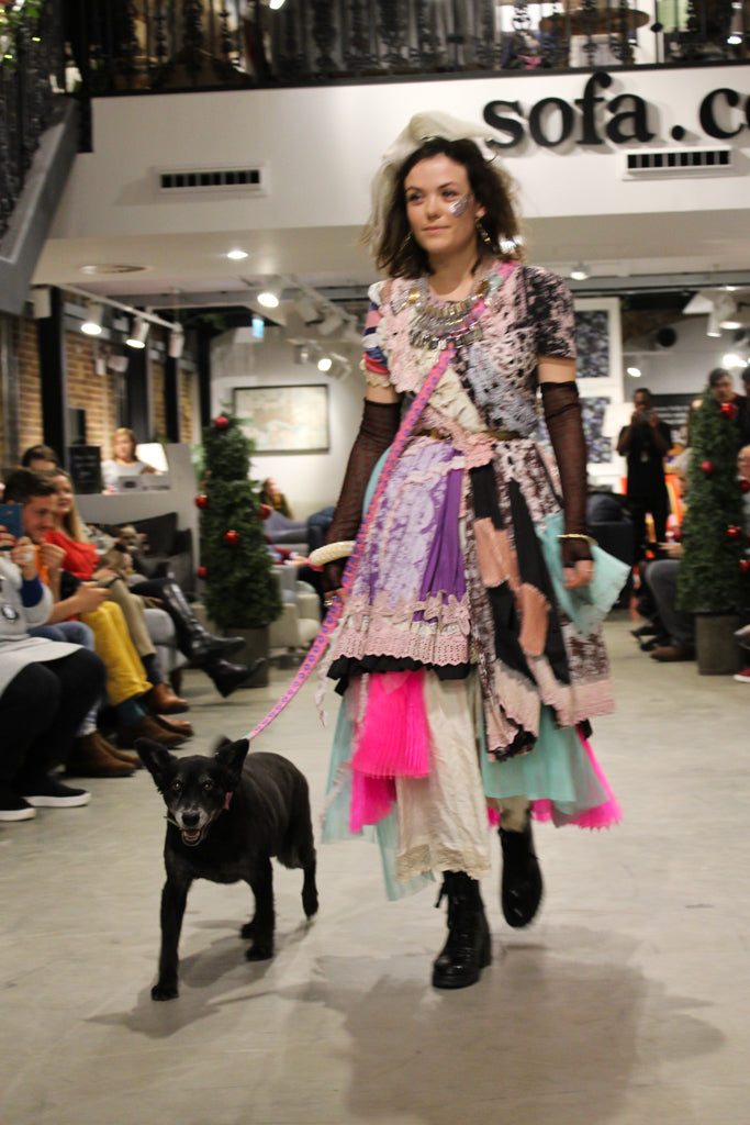 sofadotcom dog fashion show hiro and wolf