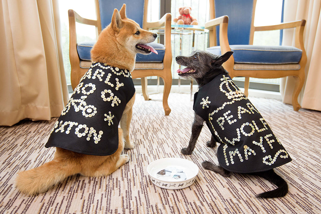 hiro and wolf wearing pearly king and queen coats
