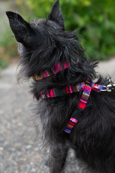 Inca Pink Dog Harness