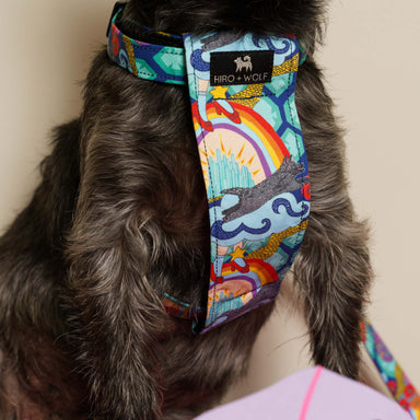 Wizard of Dog Harness