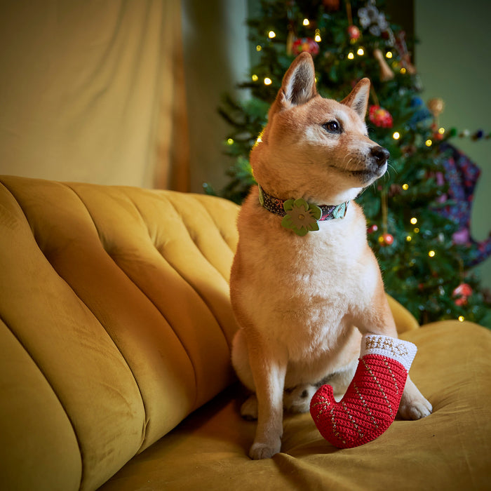 Christmas Stocking Squeaky Dog Toy