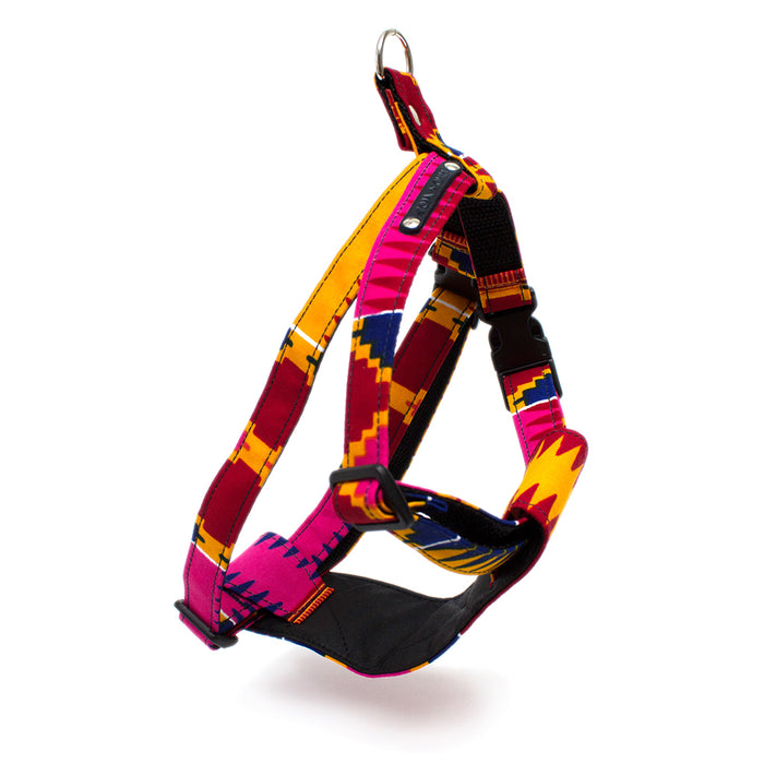 Dakar Dog Harness