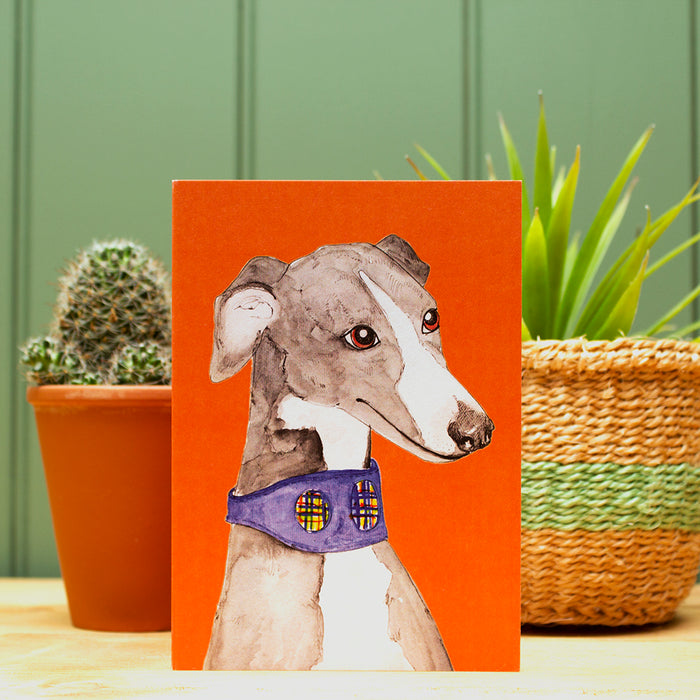 The Whippet Greetings Card