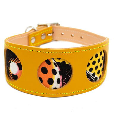 Pop Art Hound Collar