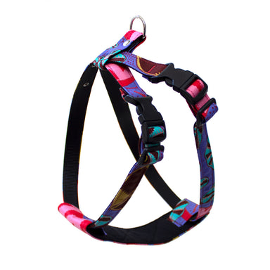 Kaleidoscope Dog Harness