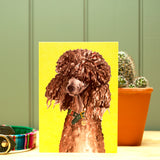 The Poodle Greetings Card