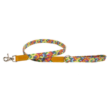Over the Rainbow Classic Dog Lead
