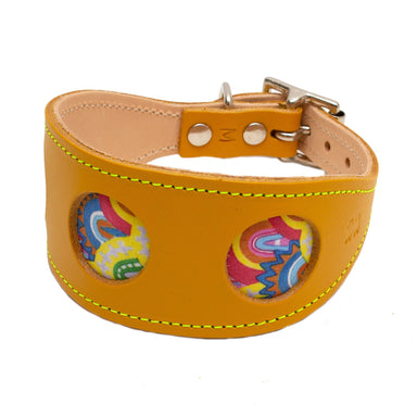 Over the Rainbow Hound Collar