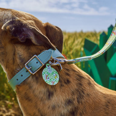 'Emerald City' Pet Tag