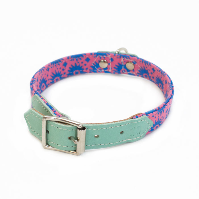 Hiro + Wolf Pink and Blue Dog Collar