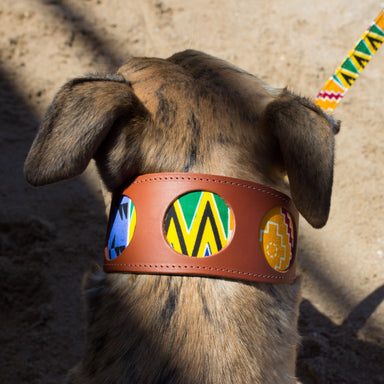 Kente Hound Collar