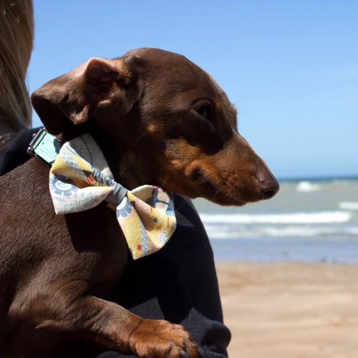 New York! New York! Dog Bow Tie
