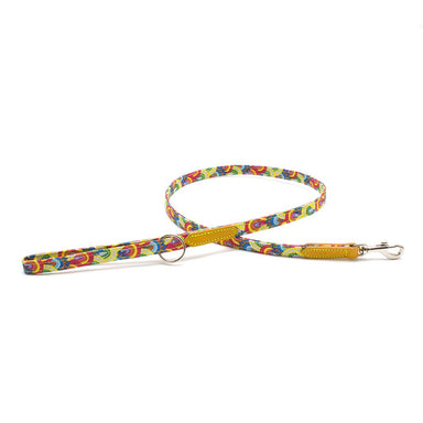 Over the Rainbow Skinny Classic Dog Lead