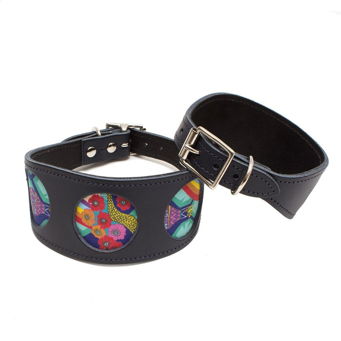 Wizard of Dog Hound Collar