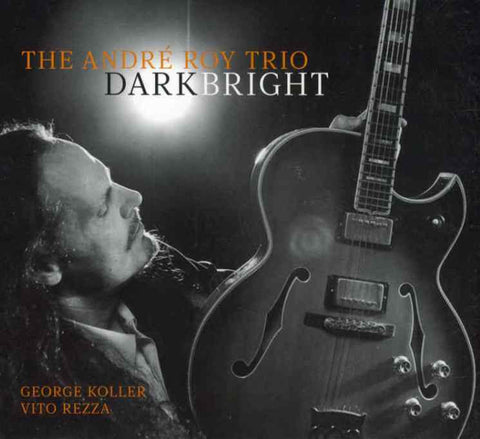 André Roy Trio - Dark Bright