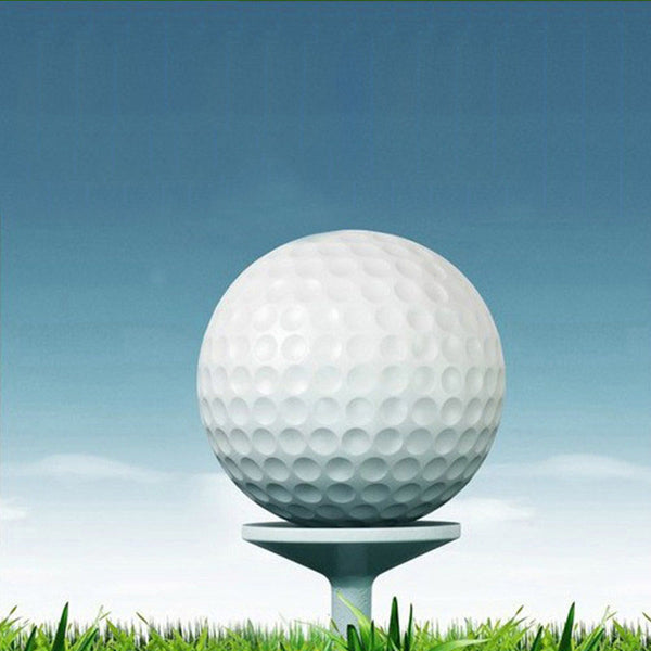 10 Pack 2-Layer Training Golf Balls-FreeShipping