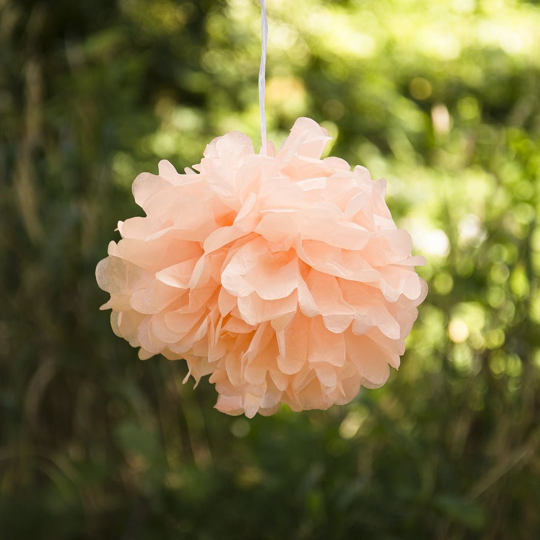 Peach Tissue Paper Pompom - Sunbeauty