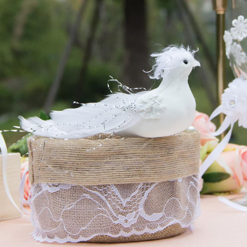 White Wedding Dove - Sunbeauty
