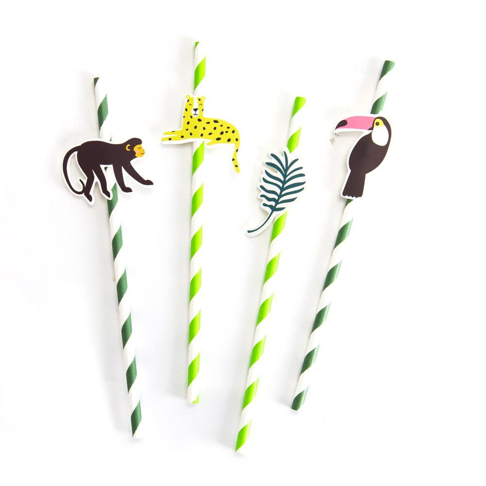 Rainforest Paper Straw - Sunbeauty