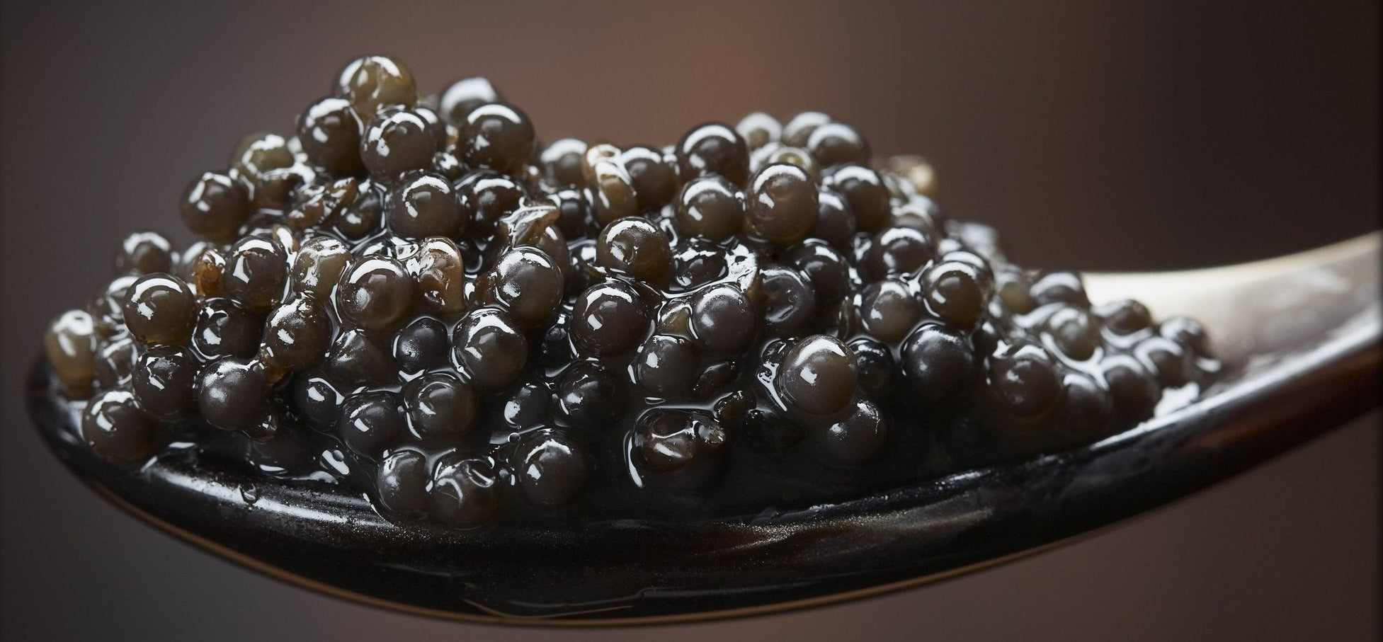 Caviar for Beginners