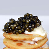 Buy Sturgeon Caviar