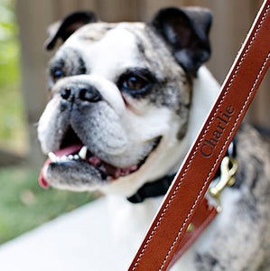 A Very Personal Leather Dog Leash