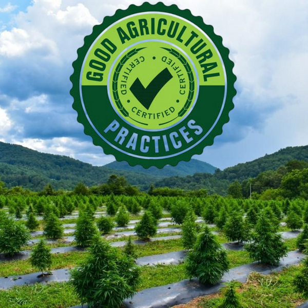 Appalachian Growers is now GAP Certified!