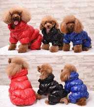Load image into Gallery viewer, Diamond Stunna Pupper Jackets