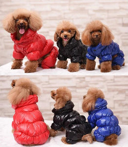 Diamond Stunna Pupper Jackets