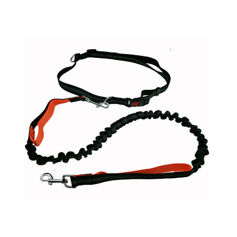 Rainbow Double Strand Nylon Leash