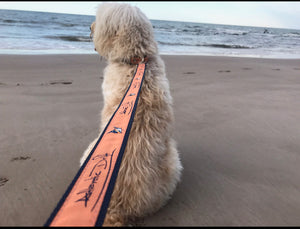 Original Logo Dog Leash - Atlantic Drift