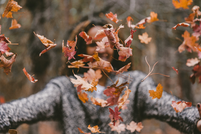 How to Enjoy the Fall Season While Staying Safe!