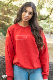 Big's Blocked Crewneck