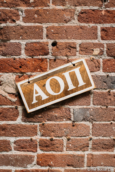 Alpha Omicron Pi Letters Sign