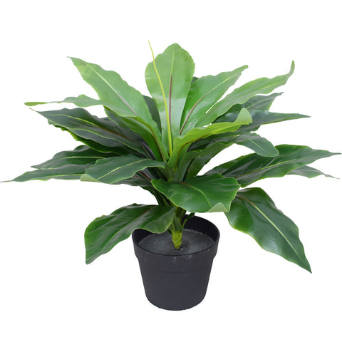 Artificial Potted Wide Leaf Birds Nest Fern 50cm