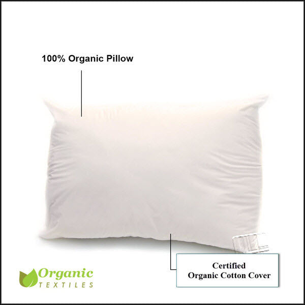 Organic Cotton Pillow 100 Cotton Myorganicsleep Best