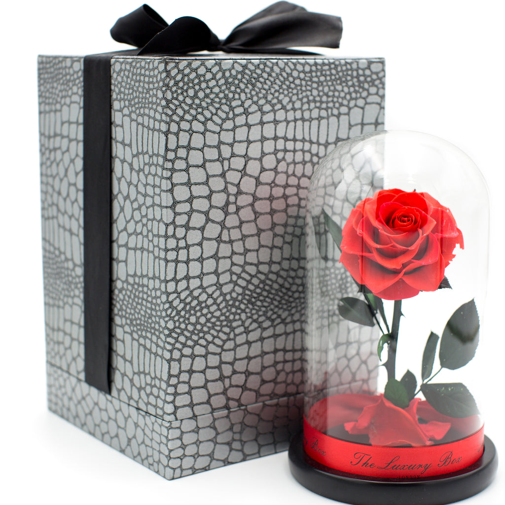 rose domes gift