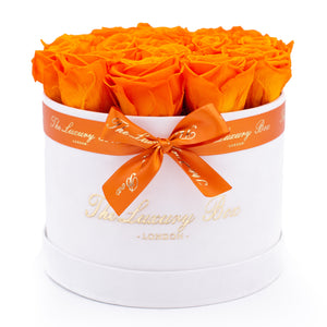 orange preserved eternity roses in white rose box