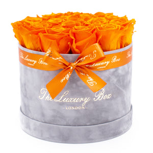 orange preserved eternity roses in grey rose box