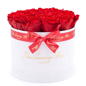 red preserved eternity roses in white rose box
