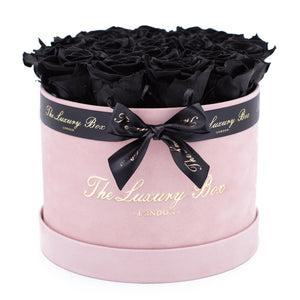 black preserved eternity roses in pink rose box