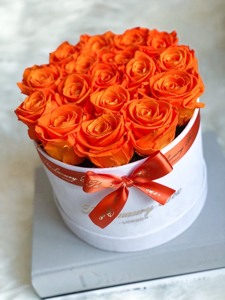 Orange Eternity Roses In White Box
