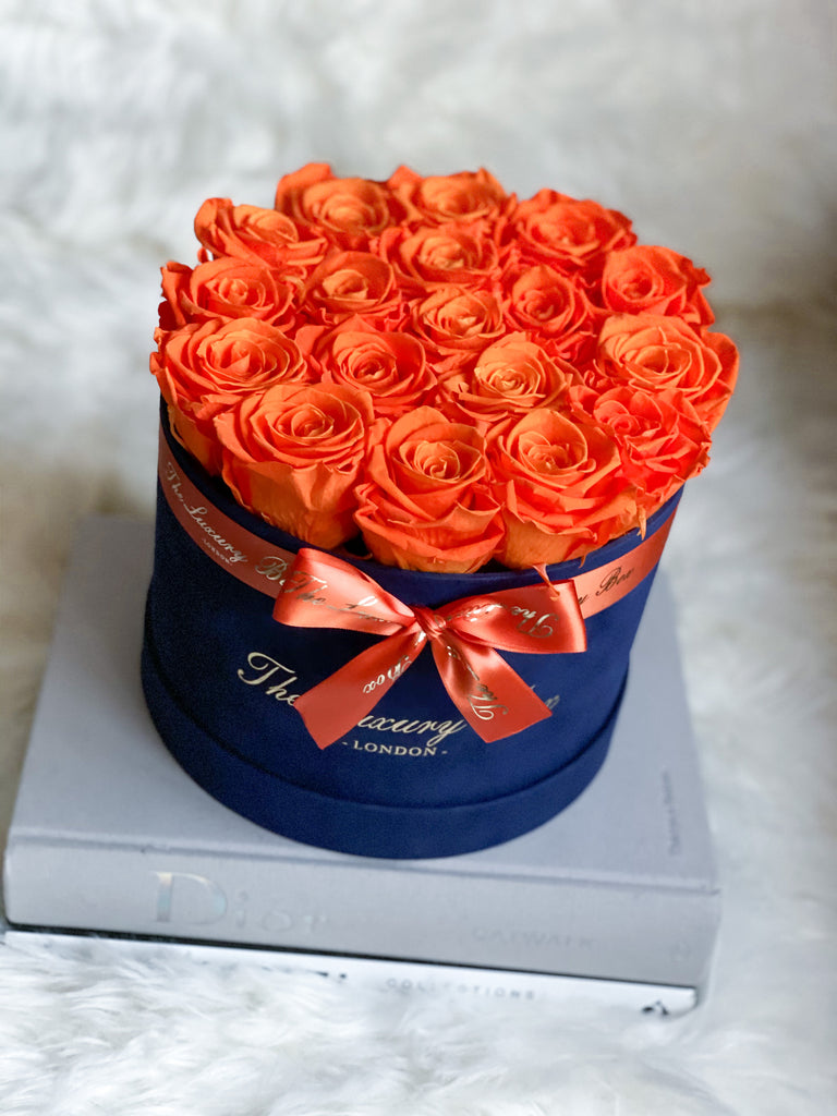 White Eternity Roses - Navy blue Velvet Box