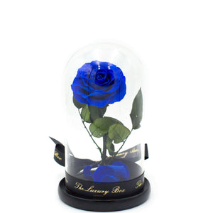 Blue Rose In Glass Dome XL - Luxury Box London