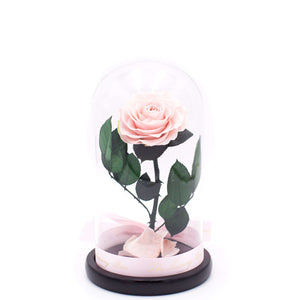 Pink Rose In Glass Dome XL - Luxury Box London