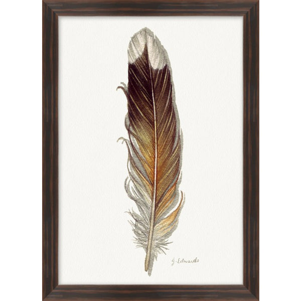 Painted Feathers, #7