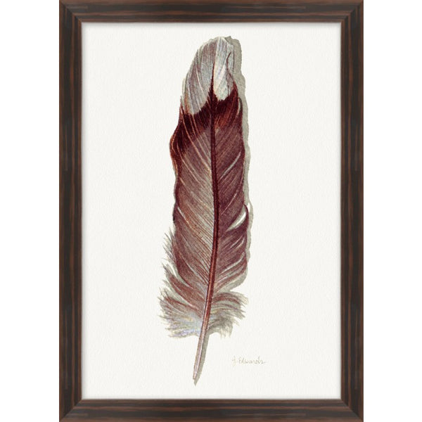 Painted Feathers, #9