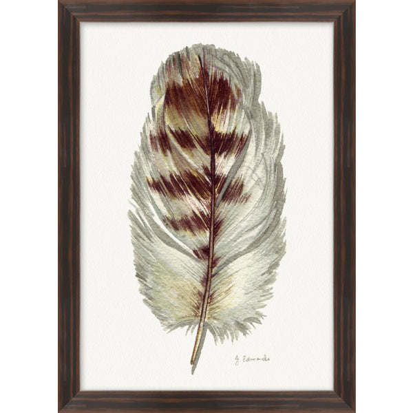 Painted Feathers, #4