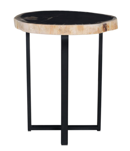 Petrified Wood - Merlin Accent Table