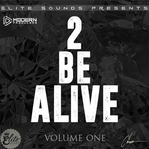 2 Be Alive Vol.1 (Drake & Future Loop Kit)